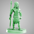 Elf barbarian warrior 28mm glaive / sword image