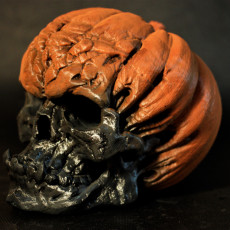 Picture of print of Evil Pumpkin Skulls This print has been uploaded by Olivier Royer-Tardif