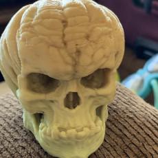 Picture of print of Free Evil Pumpkin Skull Sample