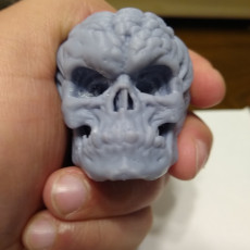 Picture of print of Free Evil Pumpkin Skull Sample This print has been uploaded by Stephen Pier