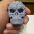 Free Evil Pumpkin Skull Sample print image