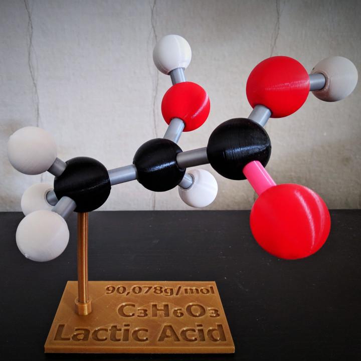 Molecular Puzzle