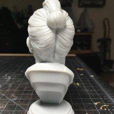 Picture of print of Samurai Bust