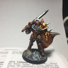 Picture of print of Sigfrido Dragonbane - Fighters Guild Hero