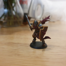 Human Fighters Guild - 4 Modular + 2 Heroes