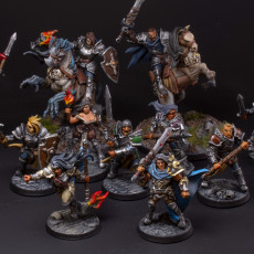 Picture of print of COMPLETE Human Fighters Guild (presupported)