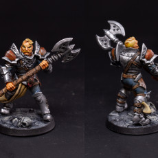 Picture of print of Human Fighters Guild - B (Male) Modular