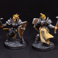Picture of print of Human Fighters Guild - C (Lady) Modular