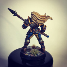 Picture of print of Human Fighters Guild - D (Lady) Modular
