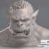 Orc Fighter image