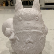 Picture of print of Medium Totoro(My Neighbor Totoro)