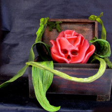 Picture of print of Deadly Rose