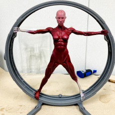 Picture of print of Vitruvian Host (Westworld)