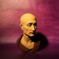 Picture of print of Portrait of Julius Caesar (?), The Green Caesar