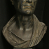 Portrait of Julius Caesar (?), The Green Caesar image