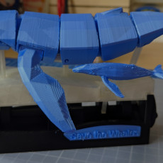 Picture of print of Save the Whales (Kinetic Whales)