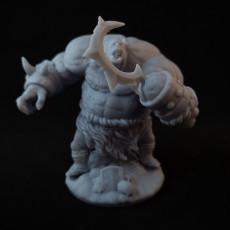 Picture of print of Ogre Berserker Miniature