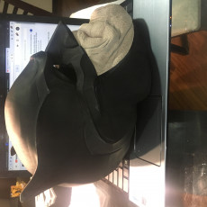 Picture of print of The Bat Chin - Batman Mask