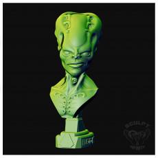 Bust Martian Community