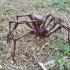 Spider Evil image
