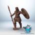 Celtic Warrior image