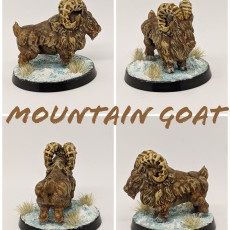 Picture of print of Goat