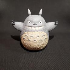 Picture of print of Totoro(My Neighbor Totoro)