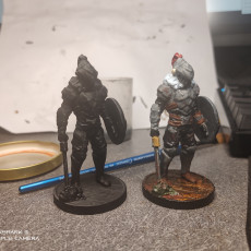 Picture of print of Slayer of Goblins