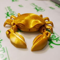 Picture of print of Articulated Crab