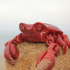 Articulated Crab image