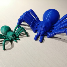 Picture of print of Articulated Tarantula