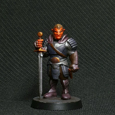 Picture of print of Hobgoblin - Tabletop MIniature