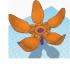 Modular Flower Toy image