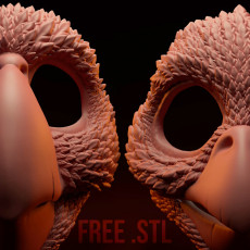 Birds Masks - Moving Jaw