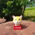 ShoeBoxCat image