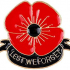 Lest We Forget Poppy - Poppy Day 2019 image