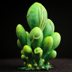 Tabletop plant:  Blob Crowd Plant  (Alien Vegetation 15)