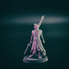 Picture of print of Dragonborn warrior