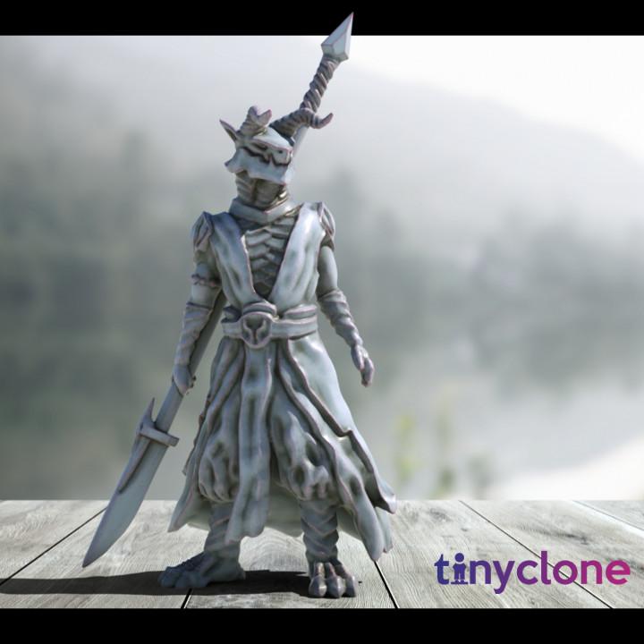 Dragonborn warrior
