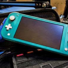 Picture of print of Nintendo Switch Lite Grip