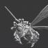Beeholder image