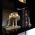 Elephant Book / DVD Ends image
