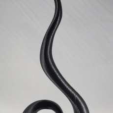 Picture of print of Spiral decorative flame