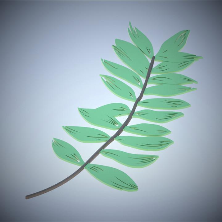 Pinnate Leaf