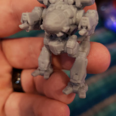 Picture of print of Madcat Mk II Prime for Battletech