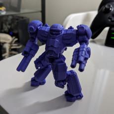 Picture of print of Nova Cat Prime for Battletech