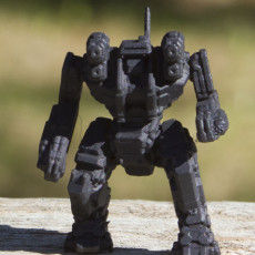 Picture of print of RGH-R Roughneck for Battletech