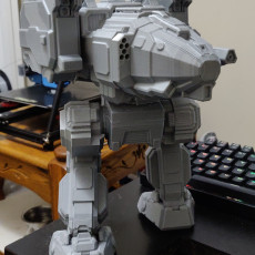 """Picture of print of STK-M Stalker """"Misery"""" for Battletech"""