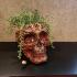 Skull Bowl image
