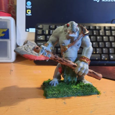 Picture of print of Troll Miniature version 1